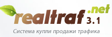 realtraf.net